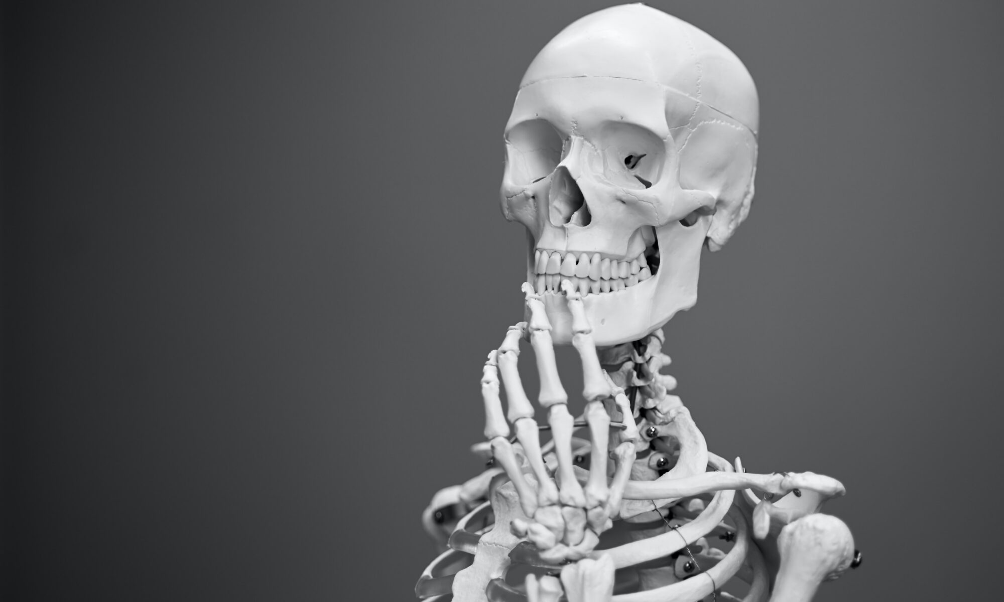 greyscale photography of skeleton
