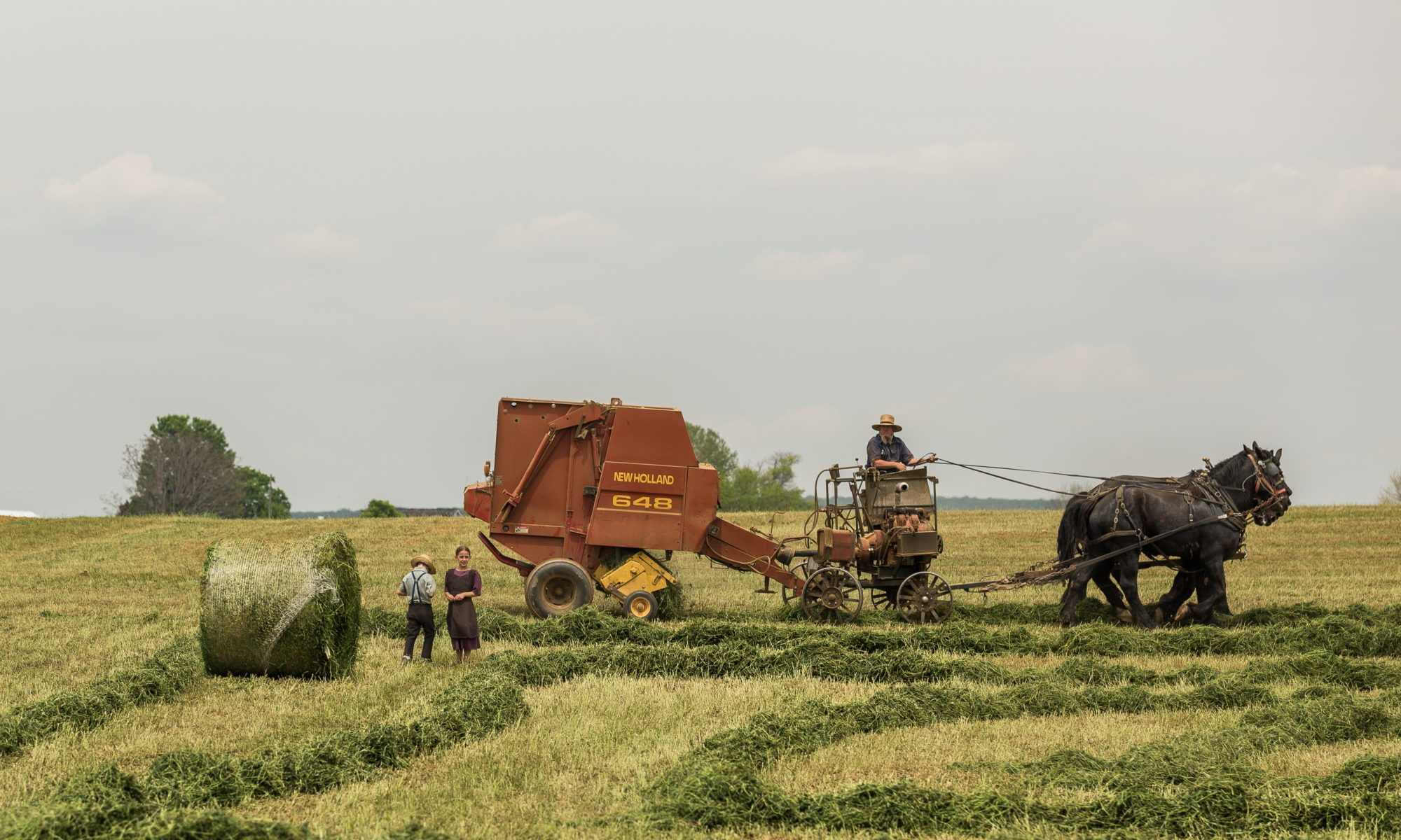 woman standing near brown combine harvester